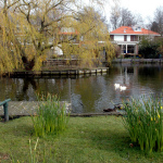 2008-03-06-pleintje