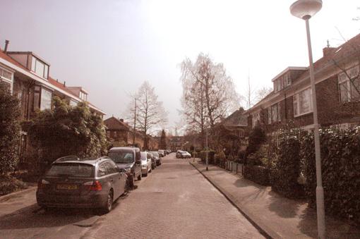 2008-03-10-borchsate