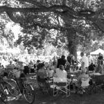 zomerfestival-2